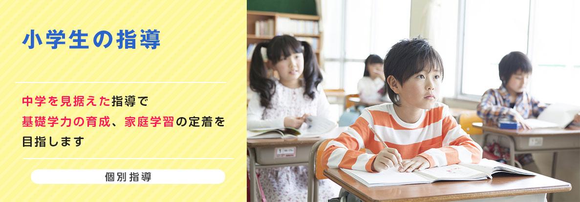 小学生の指導