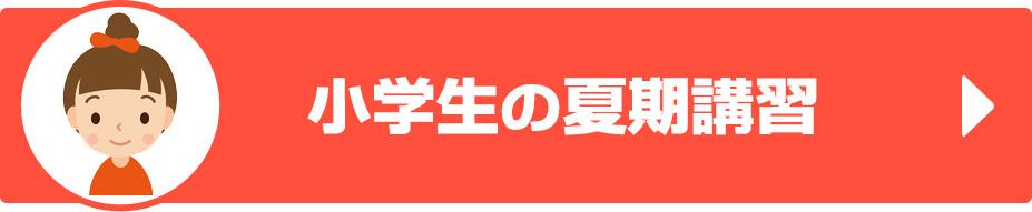 神奈川県二宮にある小学生、中学生、高校生の学習塾|ペンシルゼミナール二宮校|小学生の夏期講習